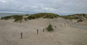 Strand in Hennetrand