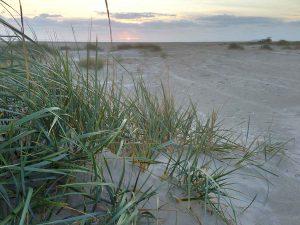 Typisches Dänemark-Strand-Feeling in Fanø
