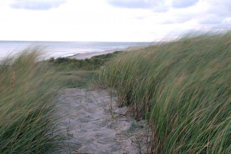 3. Teil des Wohnmobil Reiseberichts Dänemark - von der Insel Fanö an den Ringköbing Fjord