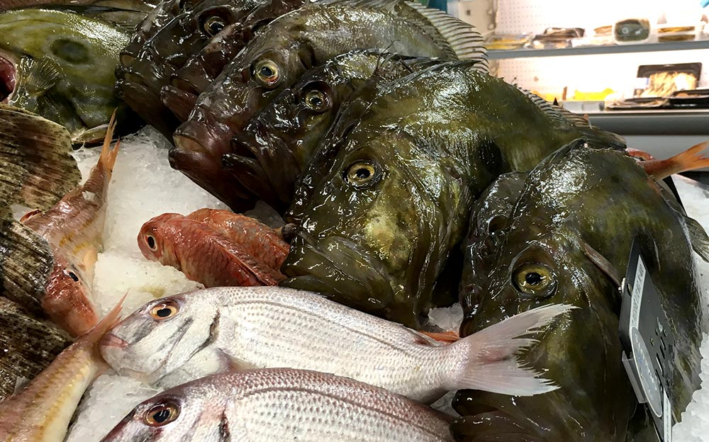 Frischer Fisch in Fécamp
