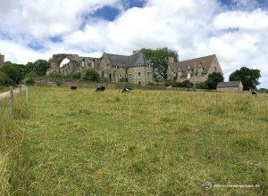 Abbaye de Beauport Rückseite
