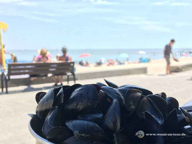 Moules Frites, das Nationalgericht