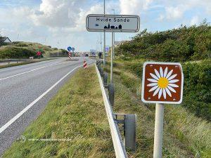 Margeritenroute Dänemark